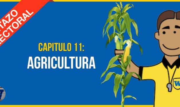 Capítulo 11: Los candidatos y la AGRICULTURA