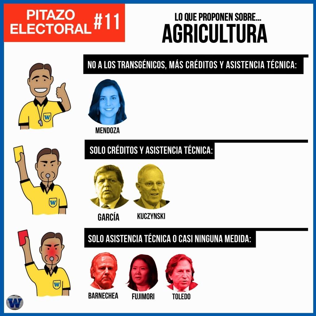 PitazoElectoral11-1