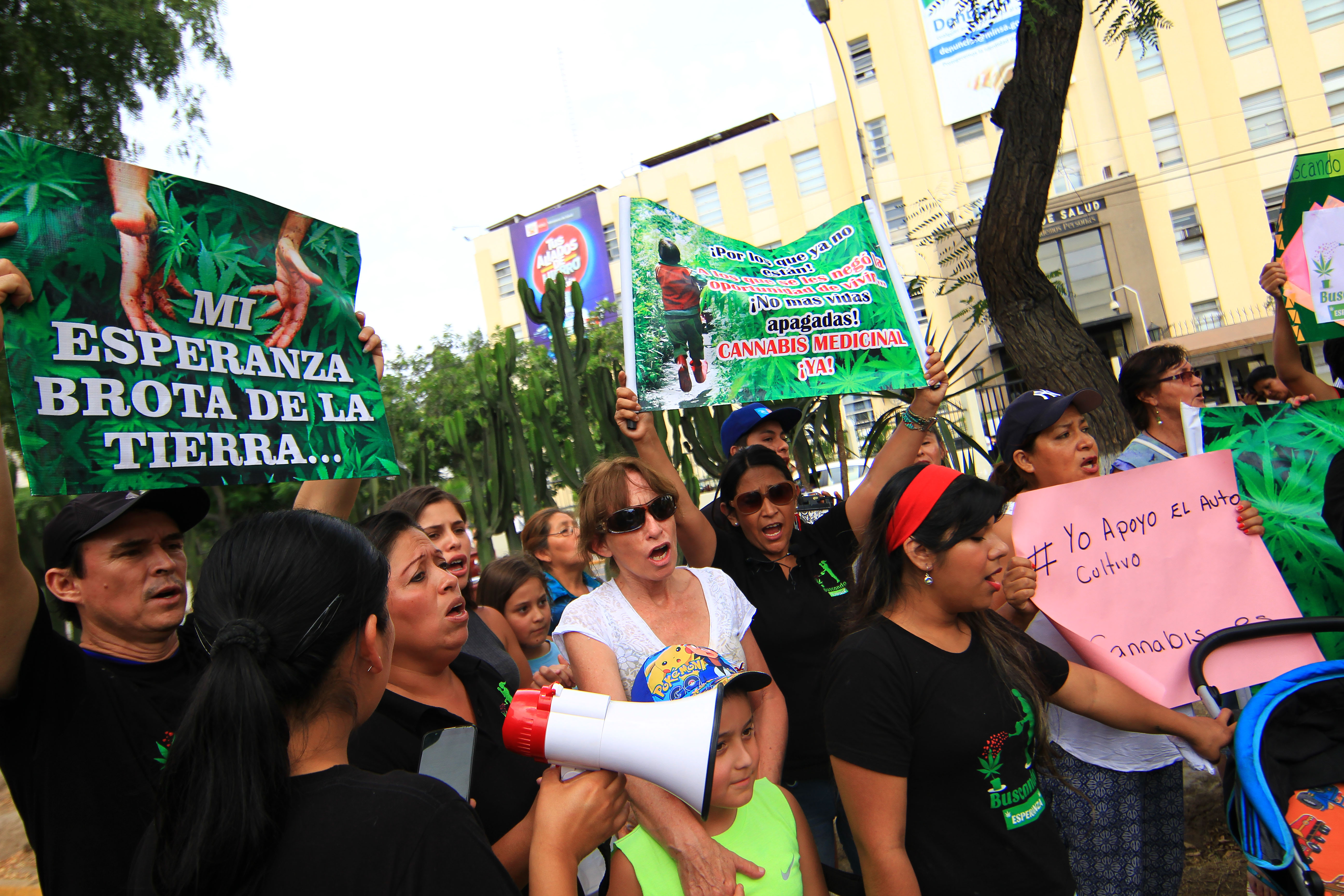 Marihuana medicinal: Una esperanza aún ilegal en el Perú