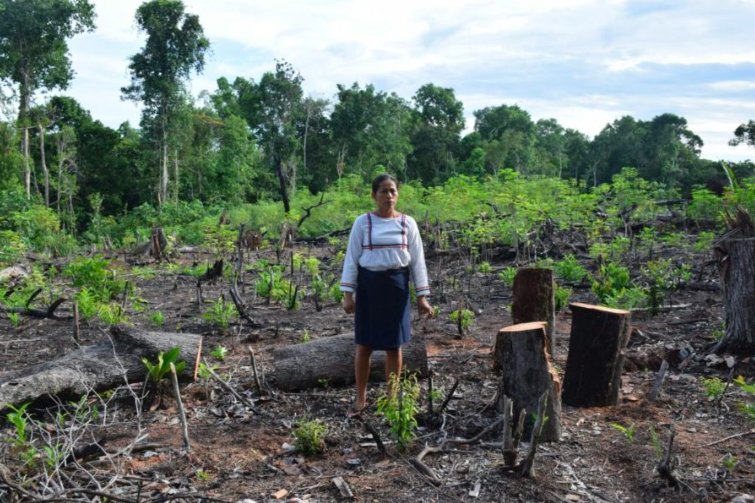 ¿En qué condiciones se encuentran las mujeres en la Amazonía?