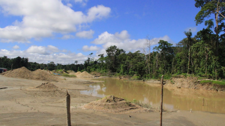 La minería ilegal devasta bosques en Amazonas