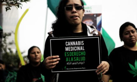 Cannabis medicinal ahora