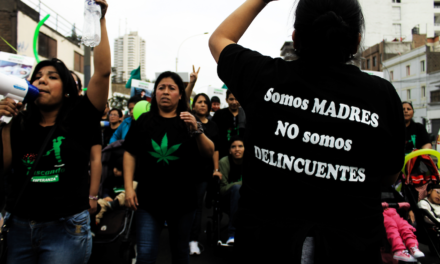 Los vacíos de la ley que despenaliza el uso medicinal del cannabis