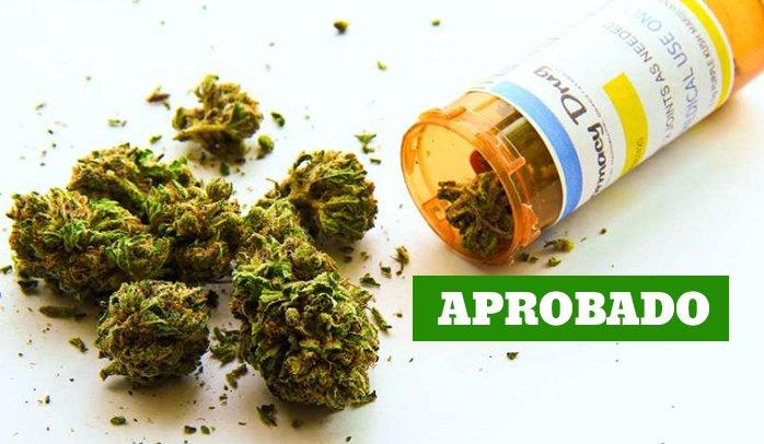 Congreso da luz verde al uso medicinal del cannabis