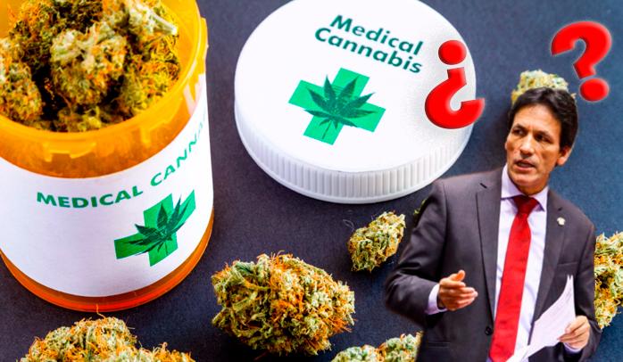 Cannabis medicinal: Las falsedades en el debate