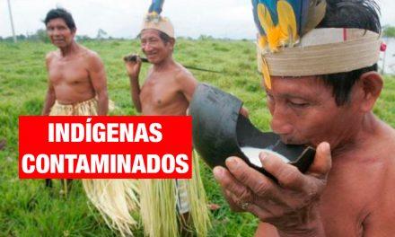 Indígenas de Loreto fueron contaminados con metales tóxicos