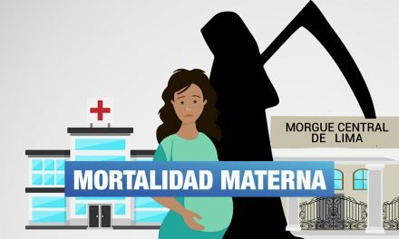 Mortalidad materna en el Perú