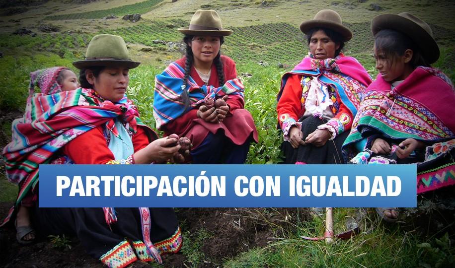 Aún deciden por ellas: desafíos de la participación de la mujer en la tenencia de la tierra