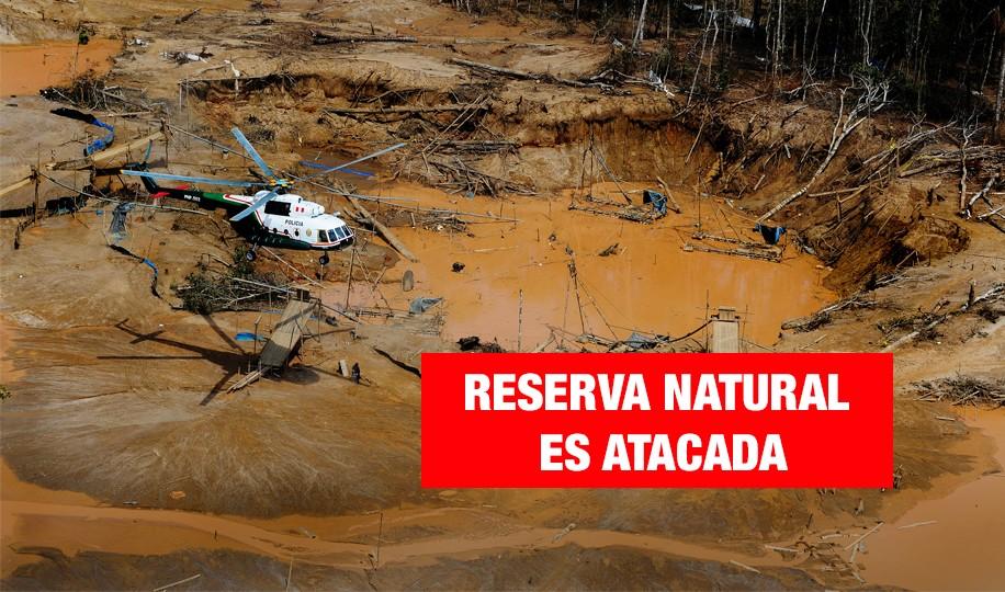 Bahuaja Sonene en peligro: biodiversidad atacada por la minería ilegal y el narcotráfico