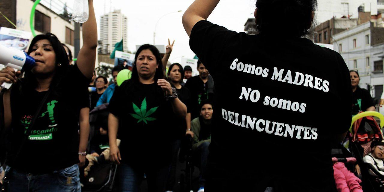 Especialistas y asociaciones de pacientes rechazan reglamento para cannabis medicinal