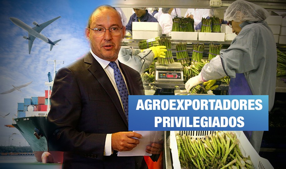 Estado exonera más de S/ 4 mil millones en impuestos a grandes agroexportadoras