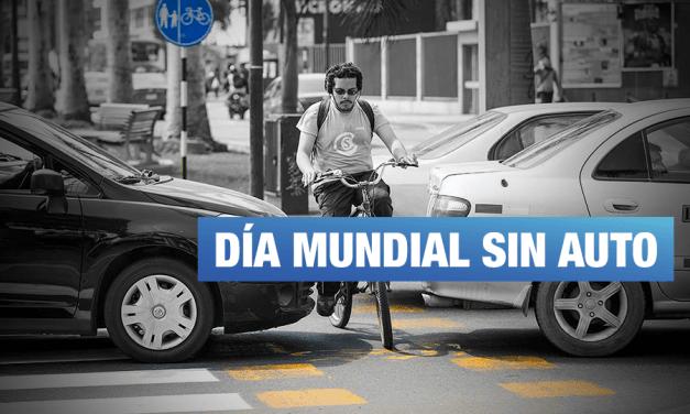 <H1>Calles seguras, para caminar y usar la bicicleta ahora</H1>-<p style='font-weight: normal;'>22 de setiembre día mundial sin auto</P></H6>