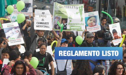 Cannabis medicinal: Minsa incluye recomendaciones de pacientes para el reglamento