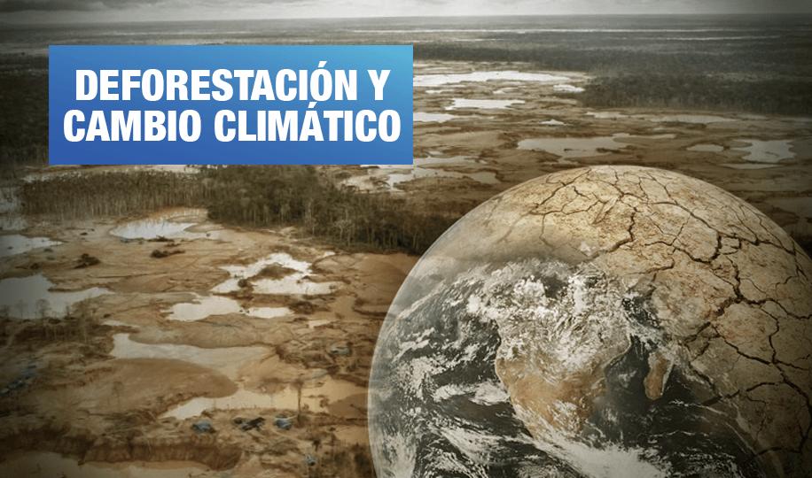 América Latina y el Caribe perdieron 96 millones de hectáreas de bosques en 15 años
