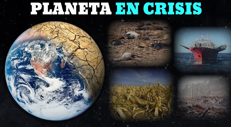 [GRÁFICA] La destrucción de la naturaleza en alarmantes cifras
