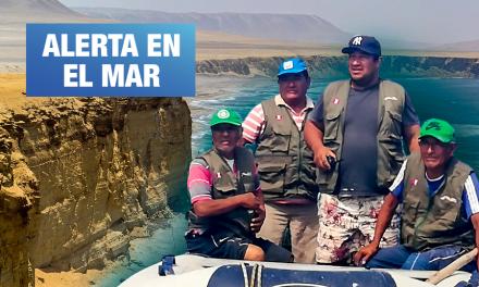 Denuncian pesca con dinamita en la Reserva Nacional de Paracas