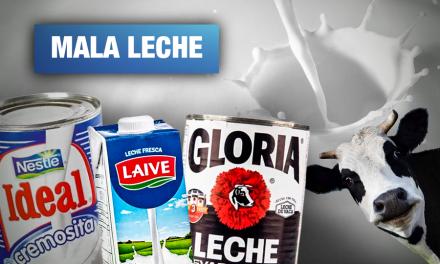 Aspec: Gloria, Nestlé y Laive presentan etiquetado engañoso