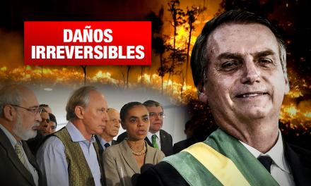 Ocho exministros acusan a Bolsonaro de desmantelar política ambiental