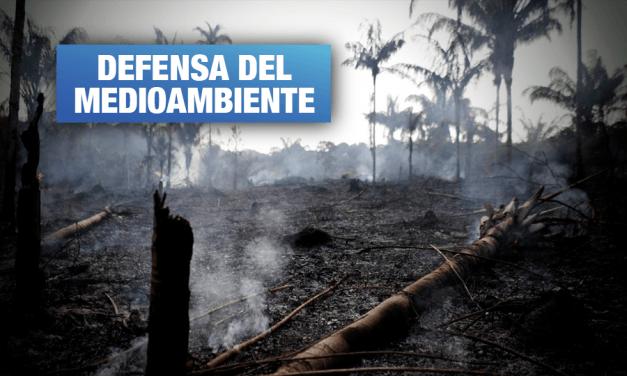 Estamos perdiendo la Amazonía y la batalla global, por José De Echave