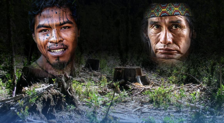 [GRÁFICA]: Defensores del Amazonas en peligro