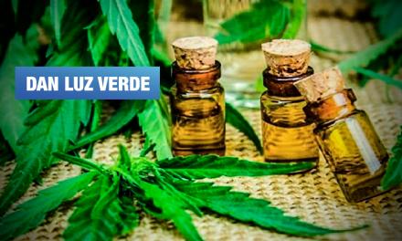 En 90 días se implementará Registro Nacional de Pacientes de Cannabis