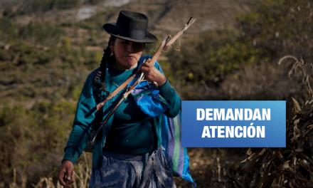 Mujeres y niñez indígena afectadas por violencia, discriminación educativa y agrícola