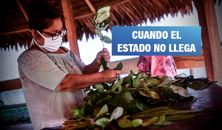 La batalla contra la pandemia en la selva se resiste con plantas medicinales