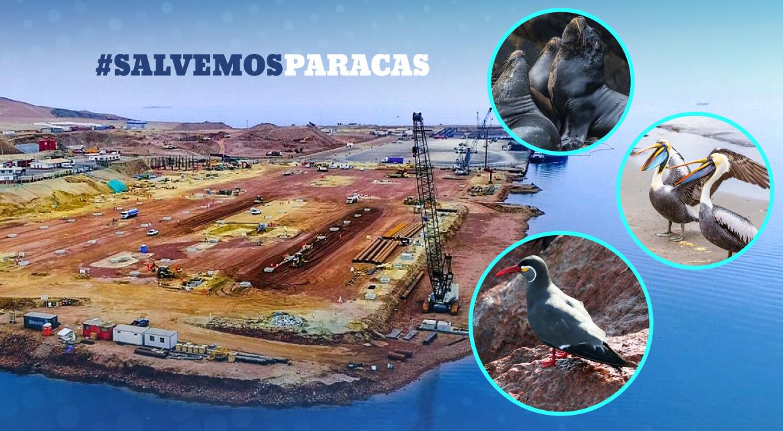 [GRÁFICA] Consorcio que impulsa puerto en Paracas amenaza con demanda al Estado peruano