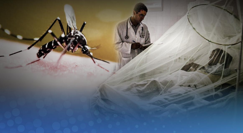 [GRÁFICA]: Otro enemigo: El dengue