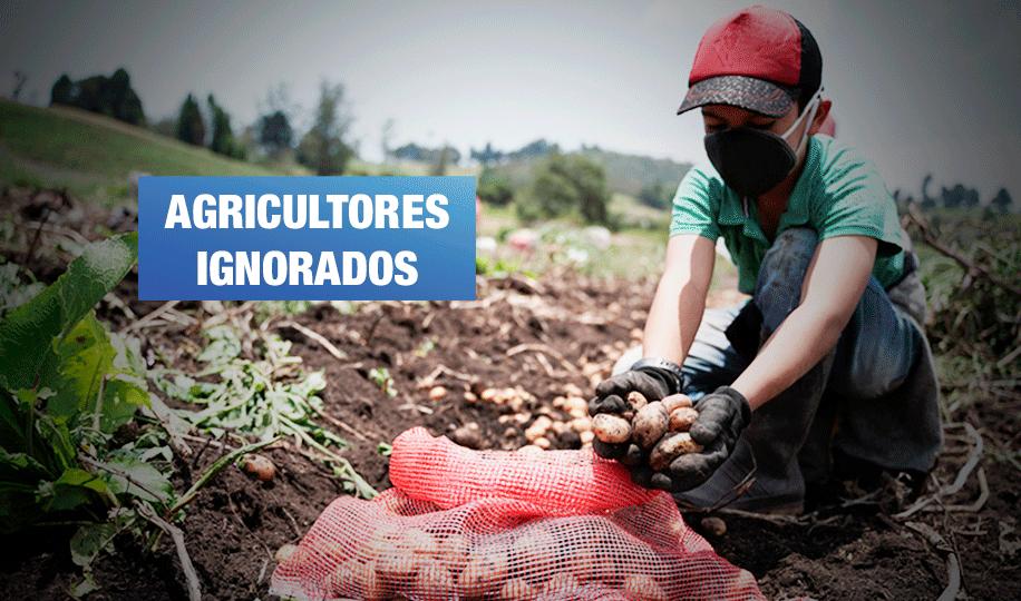 Plan Tayta: Gobierno entrega canastas con productos importados en lugar de apoyar agricultura nacional