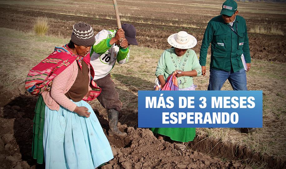 Agricultura en crisis: Gobierno deja al último reactivación económica del sector