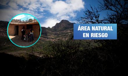 Denuncian nueva invasión en Reserva Ecológica Chaparrí de Lambayeque
