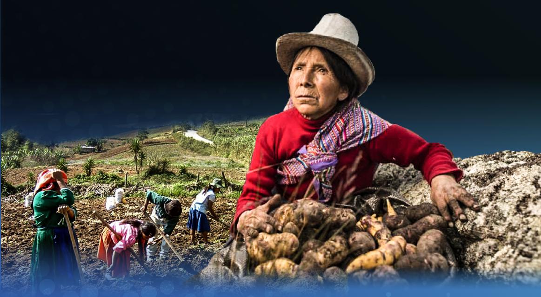 [GRÁFICA]: Crisis Agraria