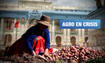 Pleno agrario: Congreso debatirá fondo de emergencia y pensiones para agricultores