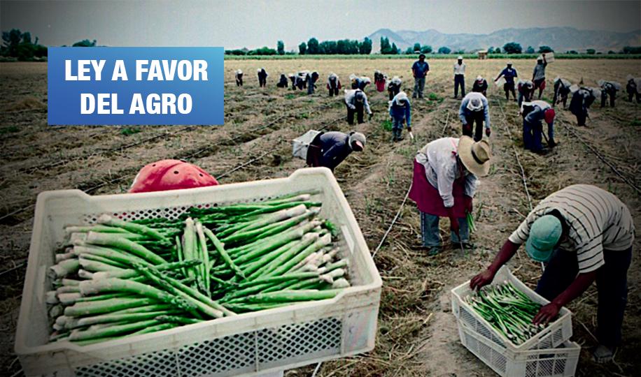 Al menos 30% de compras en programas del Estado serán productos de agricultura familiar