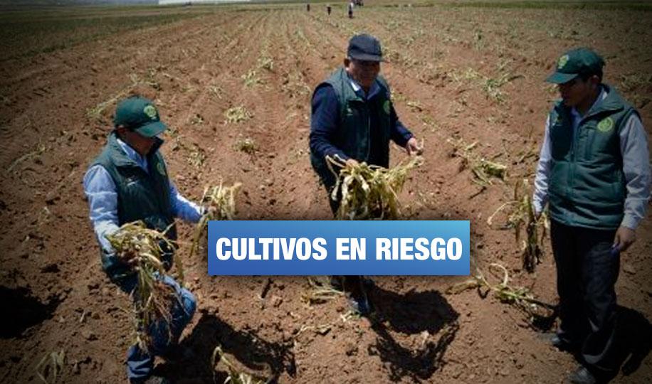 Declaran en emergencia a 181 distritos del norte peruano por falta de agua