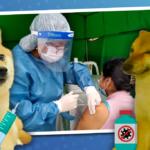 [GRÁFICA] ¿Qué hacer luego de la vacunación y por qué?