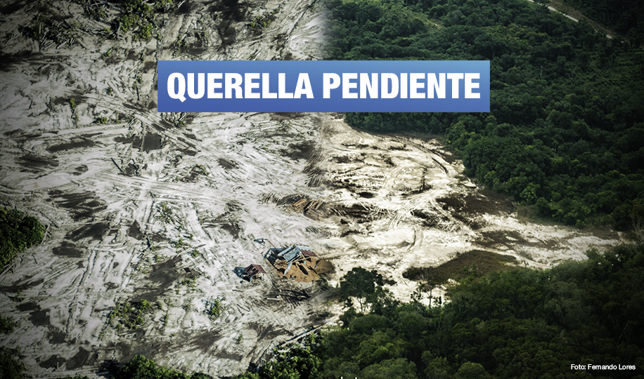 Empresa procesada por tráfico ilegal de madera persigue judicialmente a defensora ambiental
