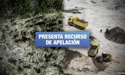 Defensora ambiental resiste ante persecución judicial de empresa investigada por tala ilegal