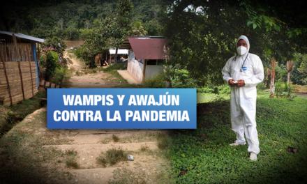 Resistencia indígena contra el covid: plantas medicinales y organización comunitaria