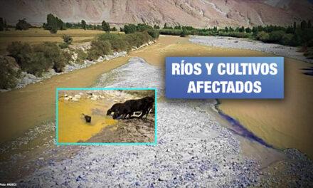 Declaran en emergencia 3 distritos de Arequipa por contaminación minera