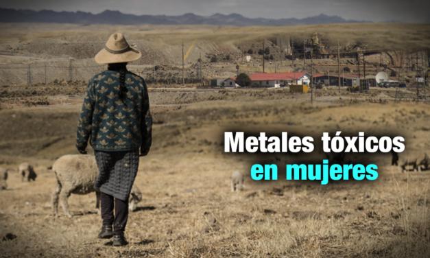 Los metales pesados bajo la piel de una mujer
