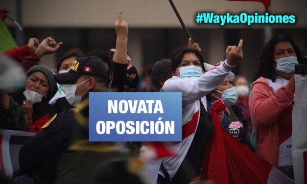 """«Yo te vi pedir una vacancia 72 horas después de una juramentación"""" por Laura Arroyo Gárate"""