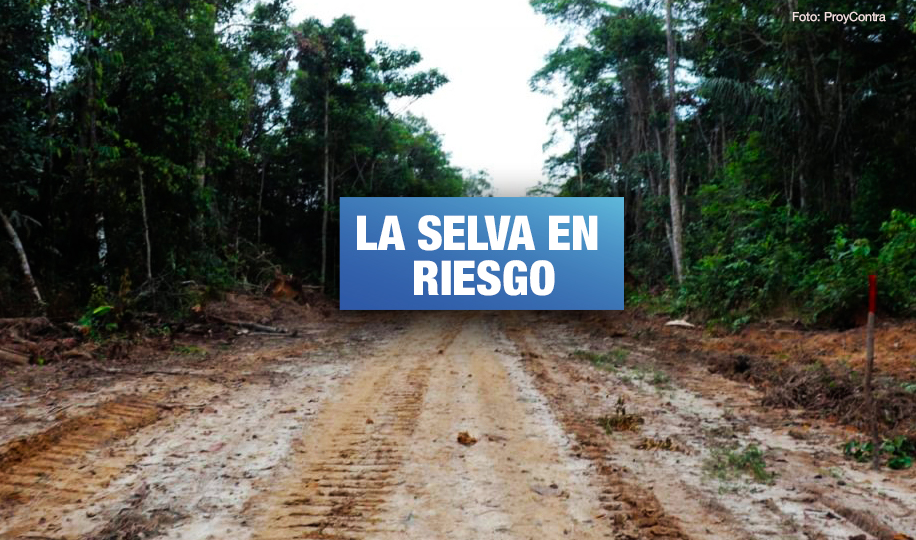 Construcción de carretera en Loreto pone en peligro pueblos indígenas en aislamiento y reservas ecológicas