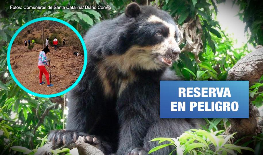 Chaparrí: Comuneros denuncian nuevas invasiones que atentan contra reserva ecológica