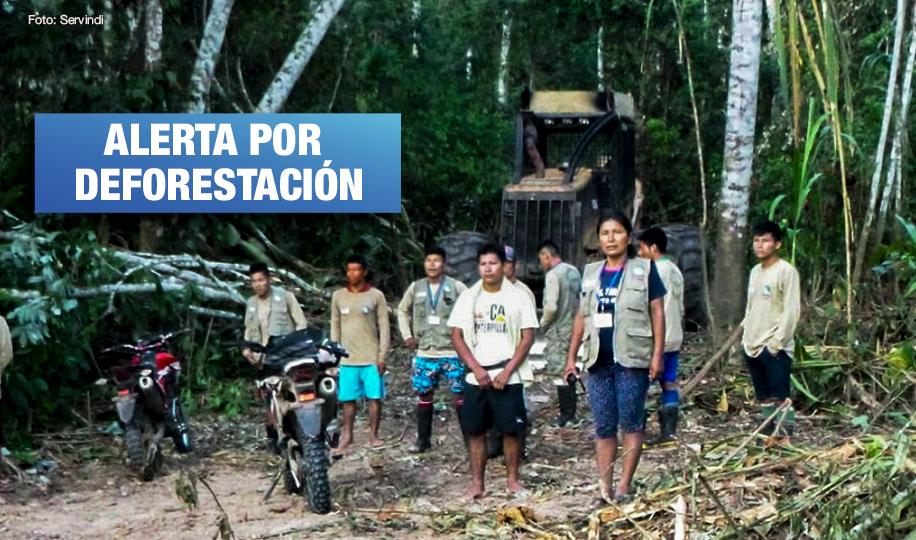 Ucayali: Dos empresas madereras son denunciadas por invadir territorio indígena