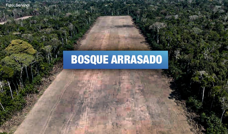 Gobierno Regional de Ucayali entregó a foráneos 73 hectáreas de bosques de indígenas shipibos konibos